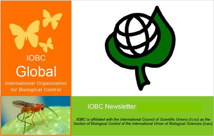 IOBC Global Newsletter, latest issue