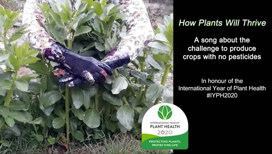 Lovely song in honour of the International Year of Plant Health: Plants Will Thrive #IYPH2020