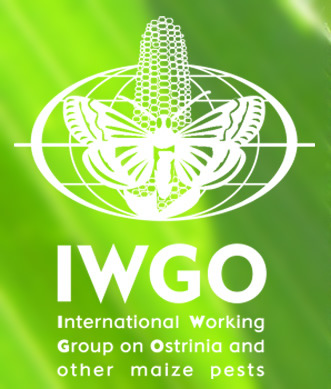 IWGO - Biocontrol of Ostrinia and Other Maize Pests, IOBC-Global Working Group